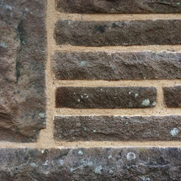 image showing close up of Lime Pointing