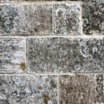 Image showing the new Lime Pointing showing the aggregates in the sands