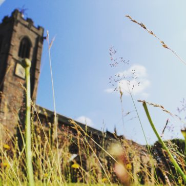 Image of St Mary's Church from the ground up, with greenery in the foreground and the Church Tower in the background